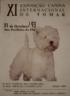 Exposição Canina Internacional de Tomar Josili - Tomar