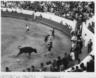 praça de touros (1960)